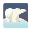 Noches polares en bingo 90